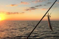 FISHING_DavidPool_Fraser-Island