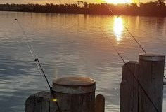 Gael_FISHING