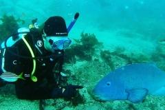 Baz-Great-Barrier-Reef