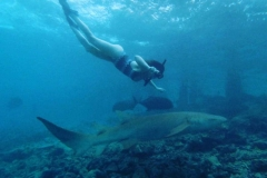 Renee-Maldives