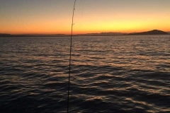 CarolynDevereux_FISHING