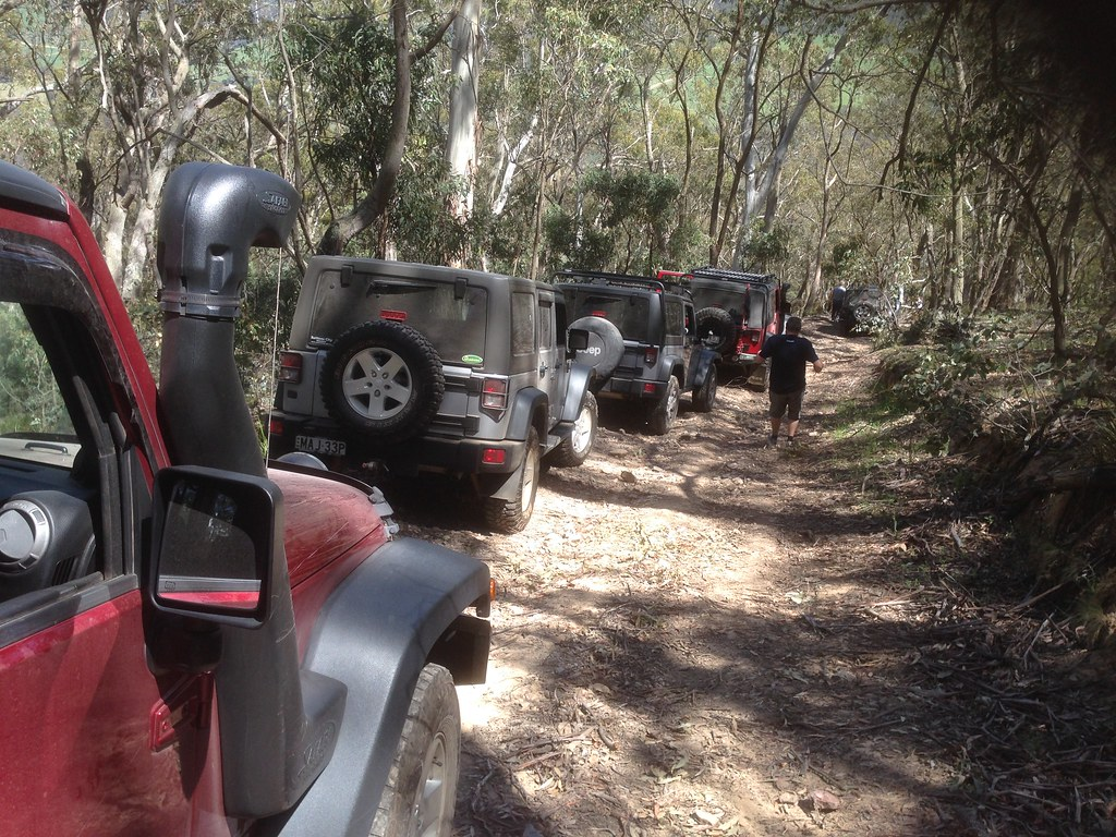 Convoy of four-wheel-drives